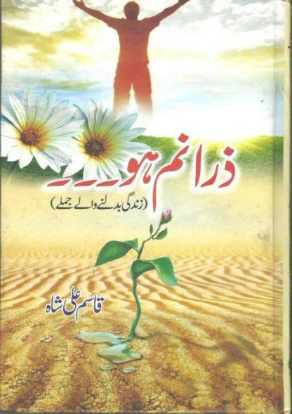 zara-nam-ho_by-qasim-ali-shah-pdf