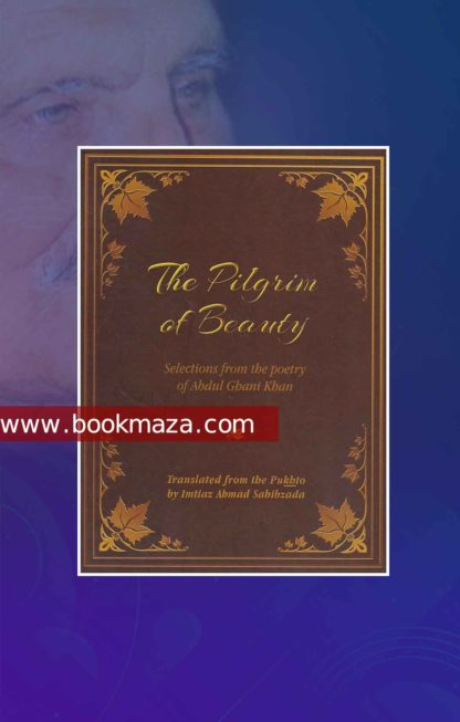 the pilgrim of beauty pdf